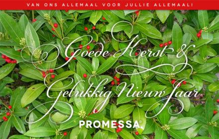promessa_goedekerst2017_880x560