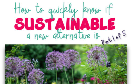 if-sustainable-1